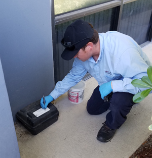 Commercial Pest Control in the Greater Sacramento Area